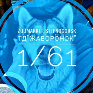 ZooMarket, зоомагазин. Степногорск, 1 мкр, 61 дом
