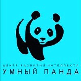 Умный Панда, детский центр. Степногорск, 3 мкр